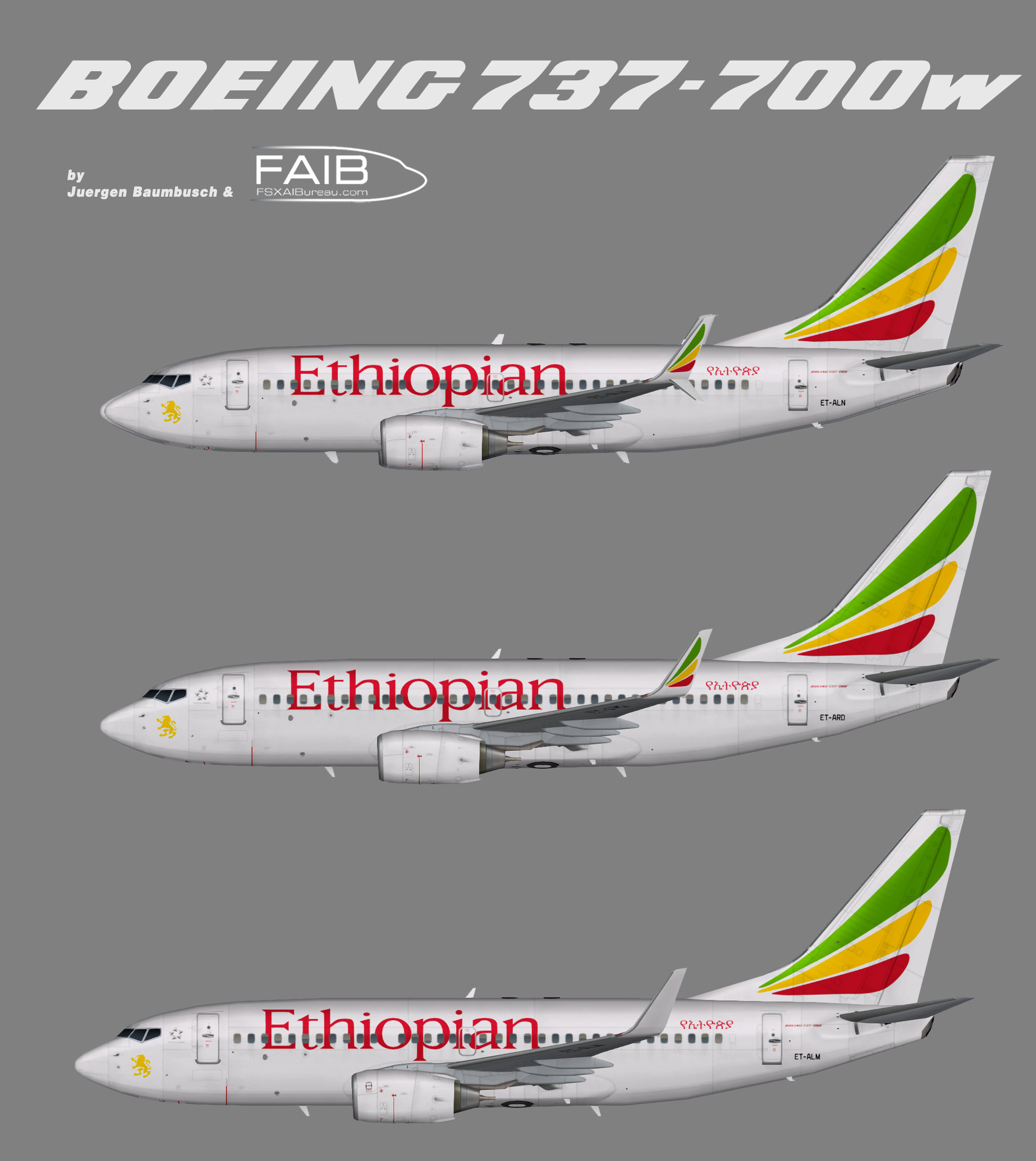 Ethiopian Airlines Boeing 737-700w