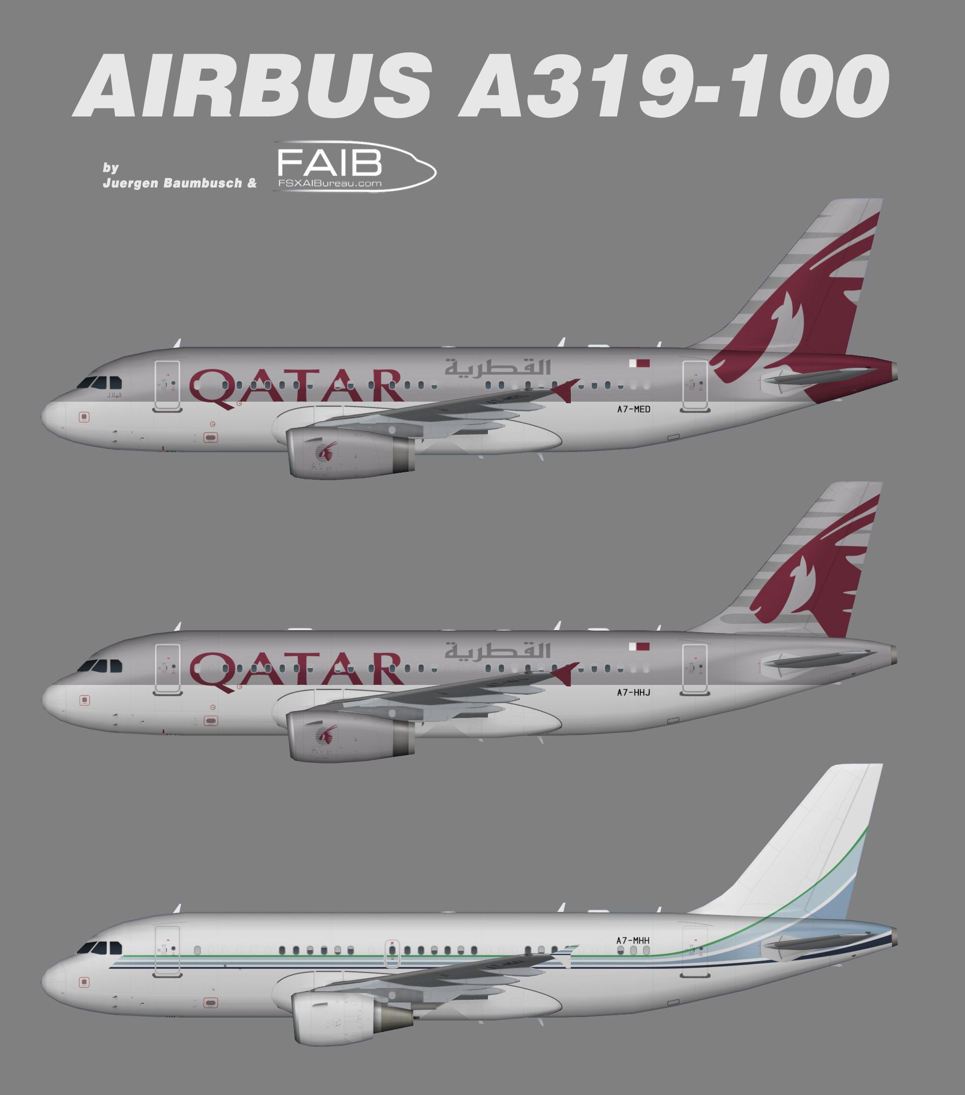 Qatar Amiri Flight Airbus A319
