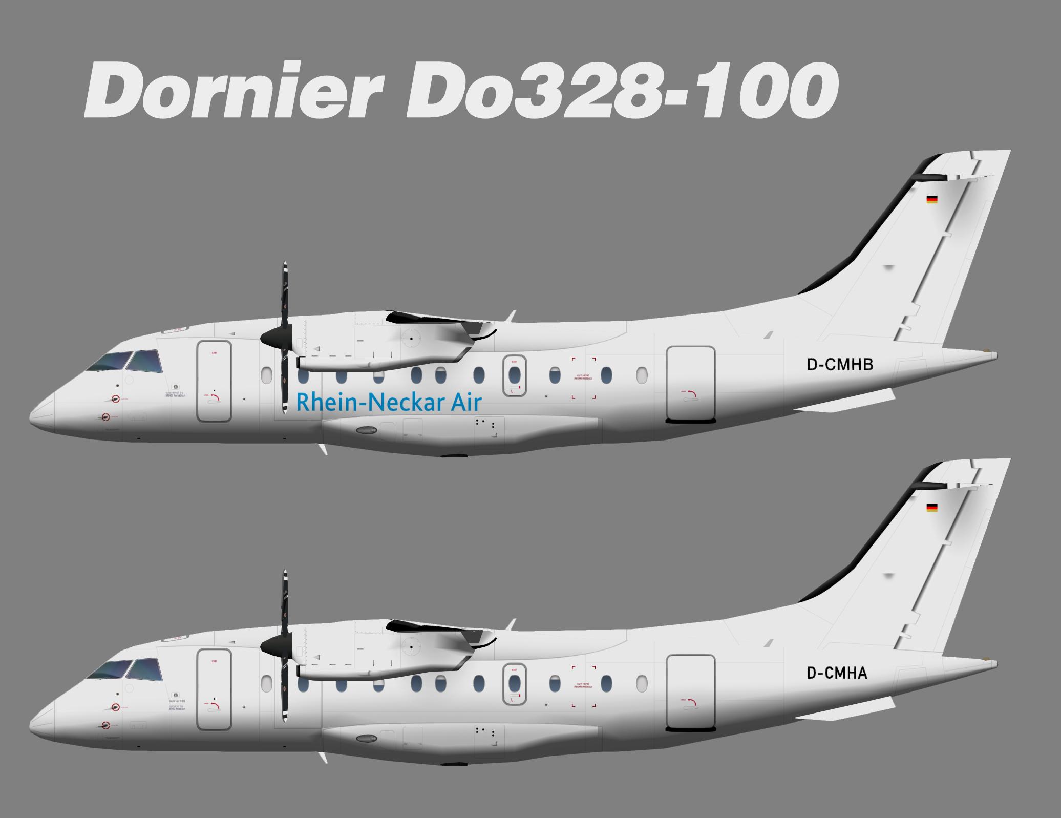 Rhein-Neckar Air Fairchild Dornier Do328-100