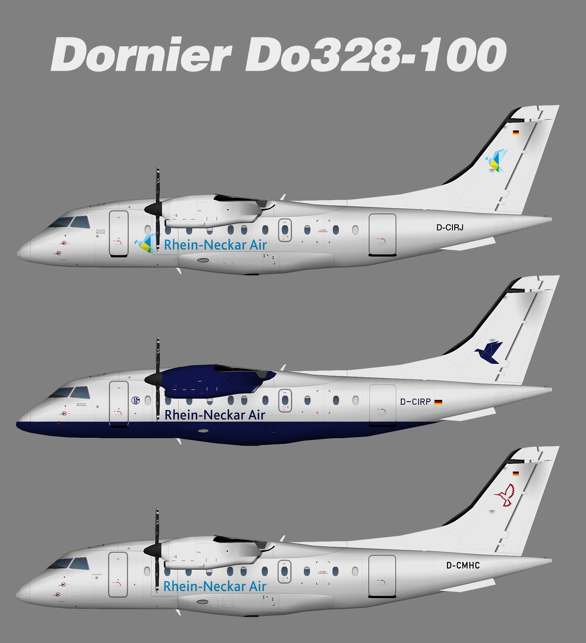 Rhein Neckar Air Fairchild Dornier Do328 100 Juergen S