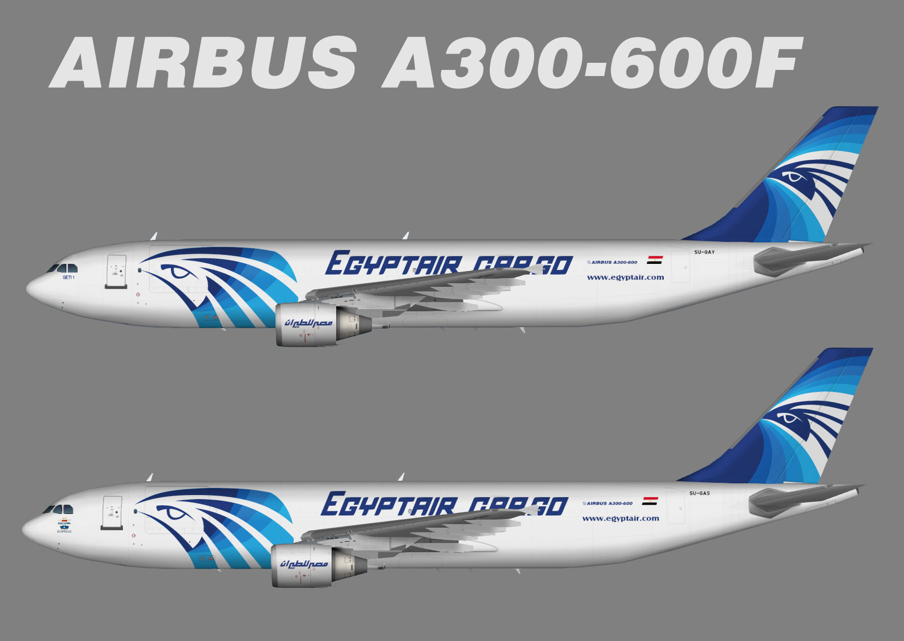 Egyptair Cargo Airbus A300-600F PW New Color