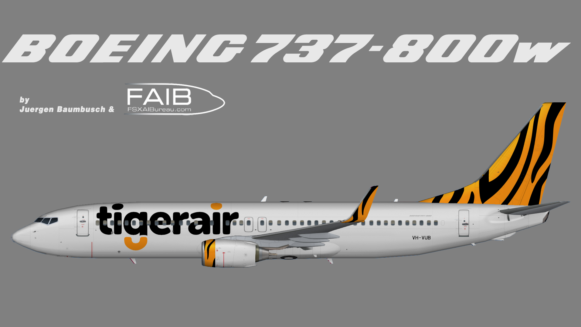 some facts about tiger airways All tiger airways flights in australia have been suspended after 'serious' safety concerns were raised about the budget airline's operations.