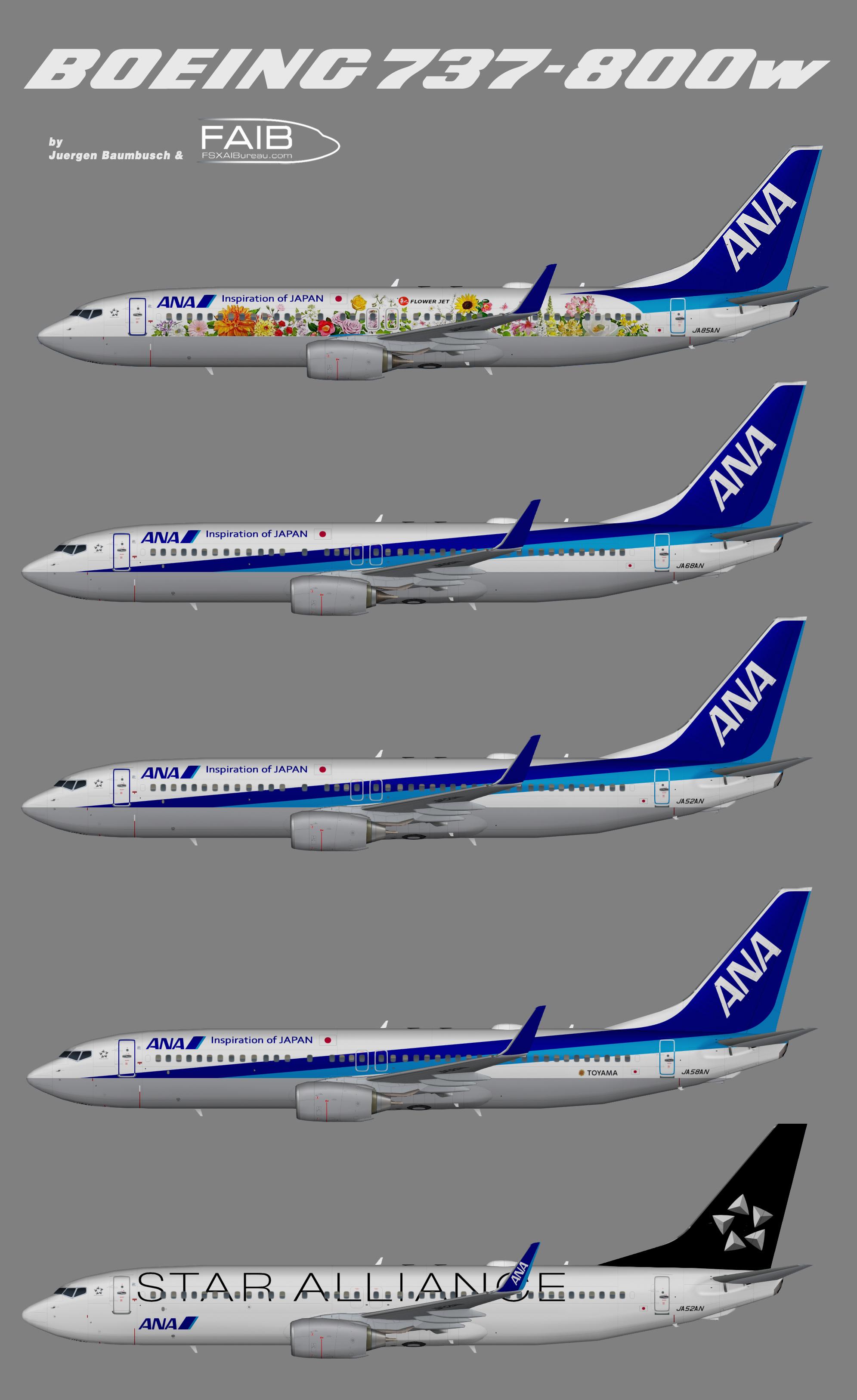 All Nippon Airways Boeing 737-800w 'Flower Jet'