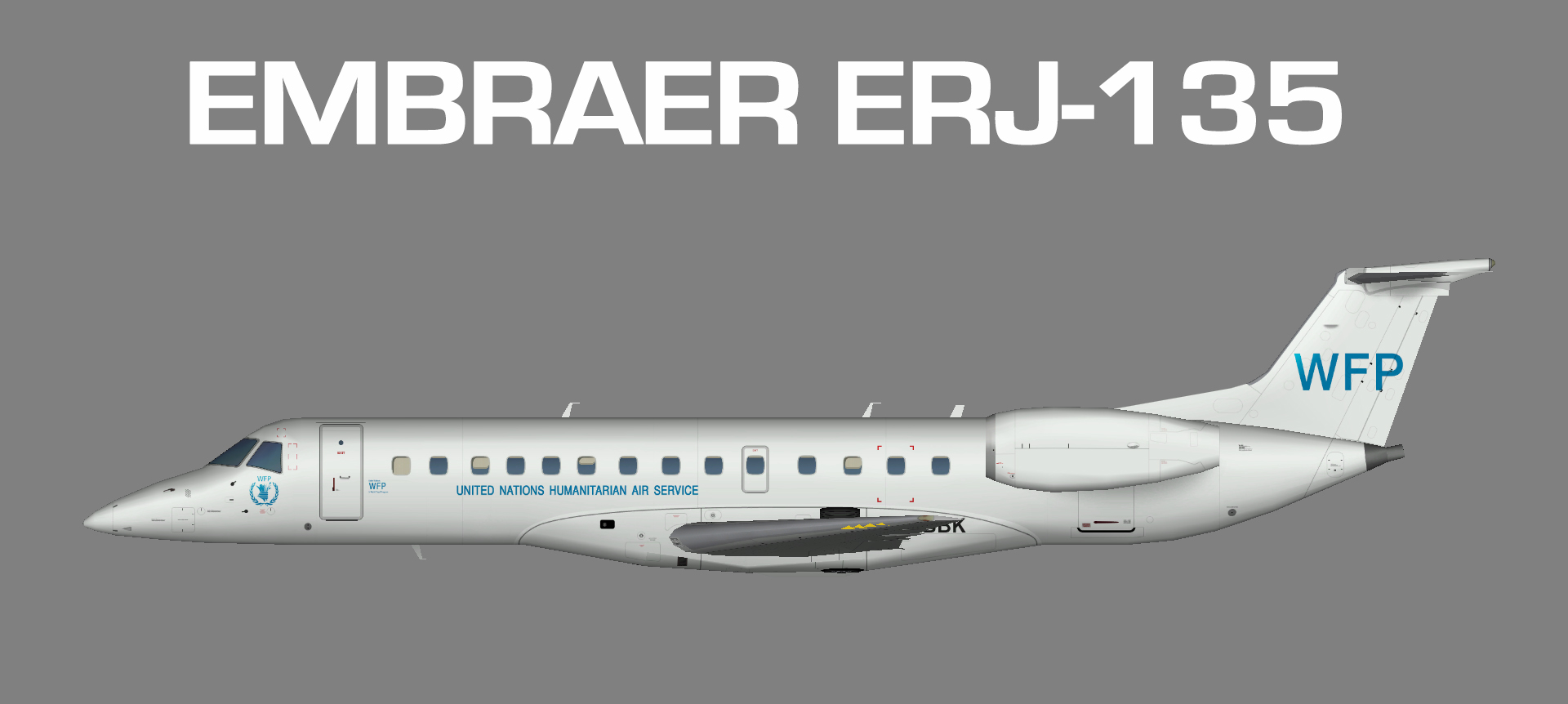 Erj 135 fsx download