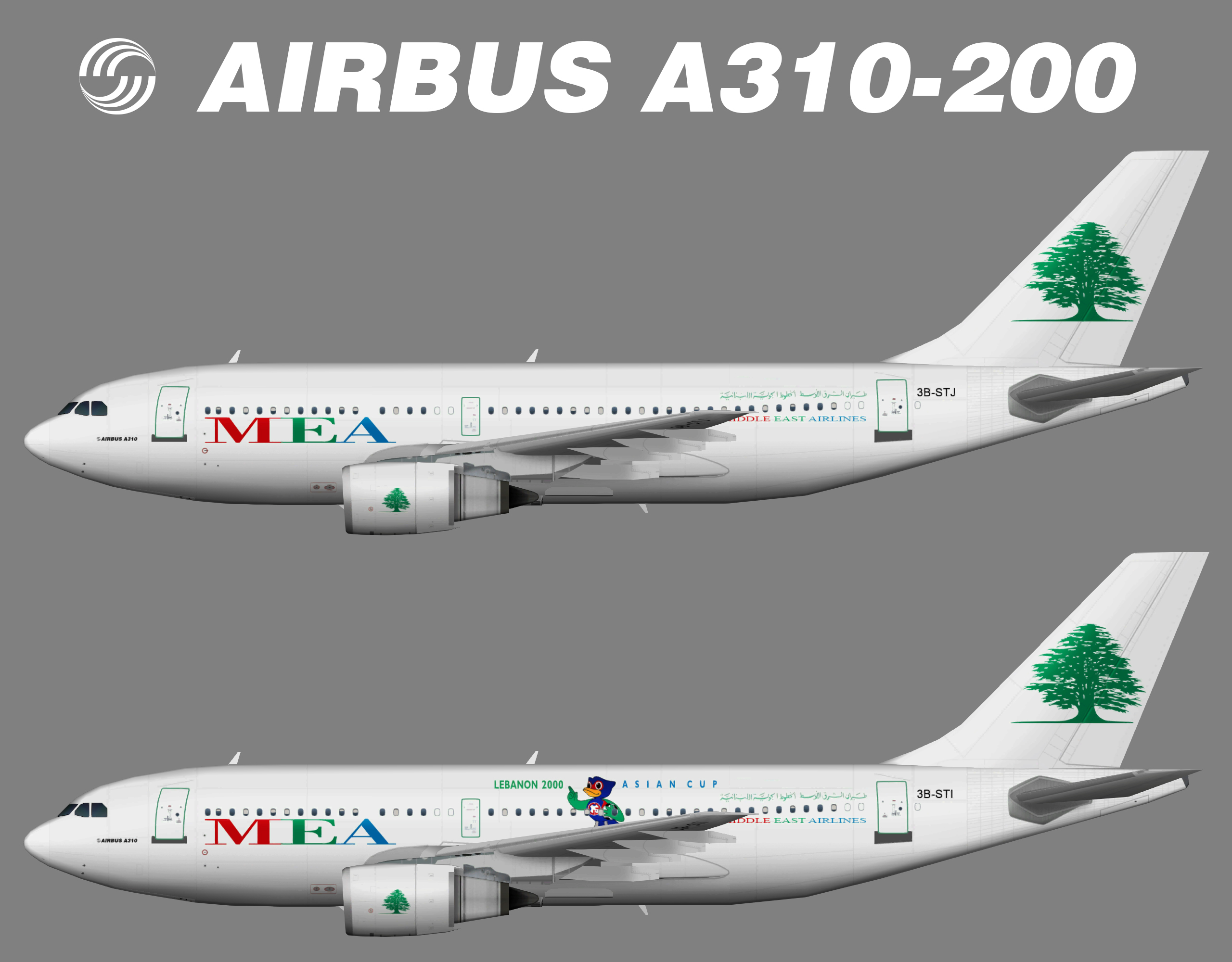 Middle East Airlines MEA Airbus A310-200