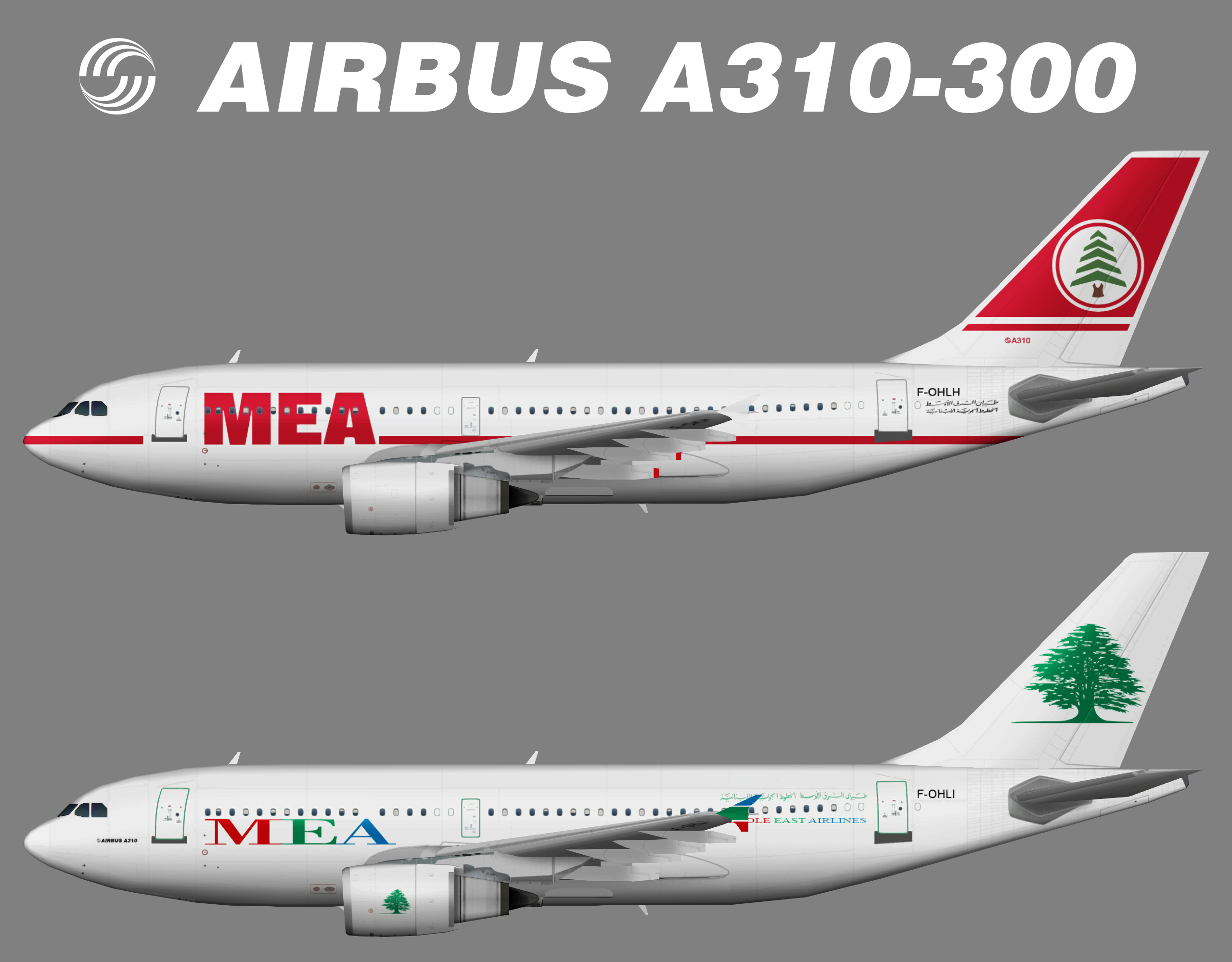 Middle East Airlines MEA Airbus A310-300