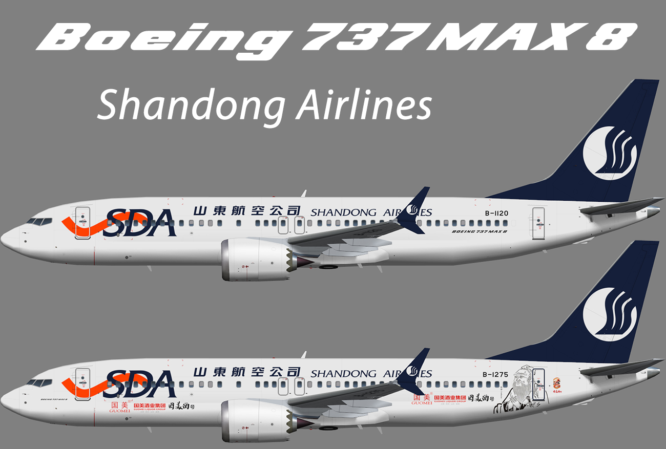 Shandong Airlines Boeing 737 MAX 8 – Nils