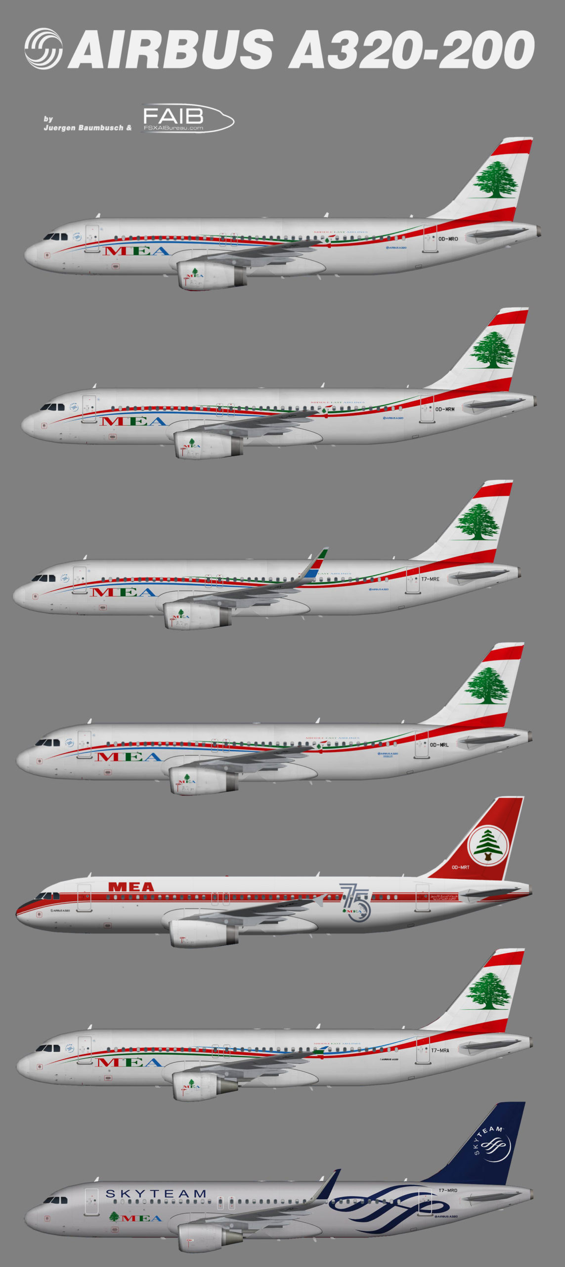 Middle East Airlines (MEA) Airbus A320-200 (representative fleet)