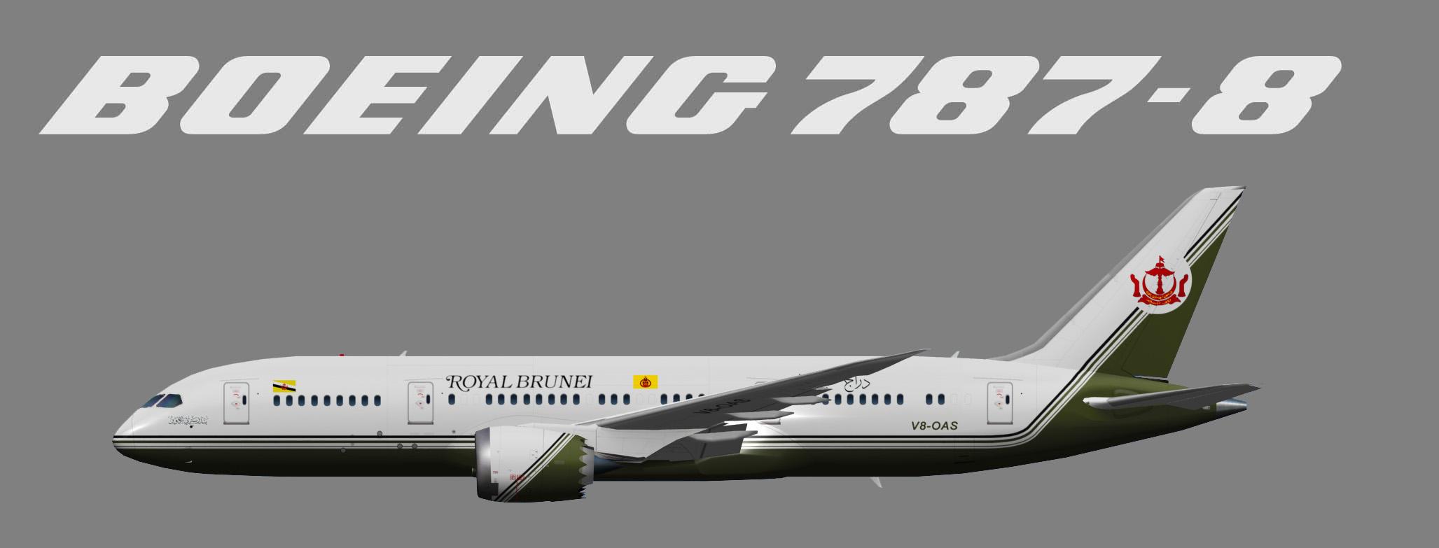 UTT Brunei Sultans Flight Boeing 787-8