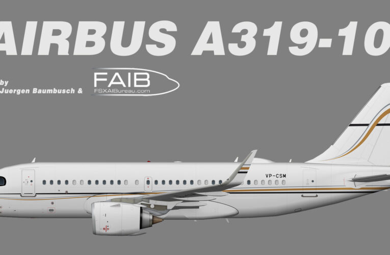 Shimao Group Airbus A319NEOCJ